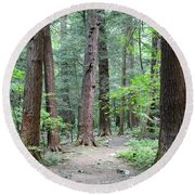 The Ancient Hemlock Forest Round Beach Towel