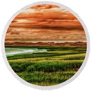 The Atlantic White Cedar Swamp Trail Round Beach Towel