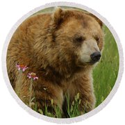 The Bear 1 Dry Brushed Round Beach Towel