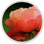 The Beauty Of A Rose Round Beach Towel