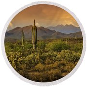 The Beauty Of The Sonoran Desert  Round Beach Towel