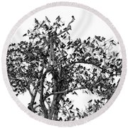 The Birds And The Tree Round Beach Towel