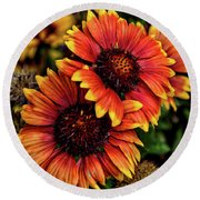 The Bold And Beautiful Pair Round Beach Towel
