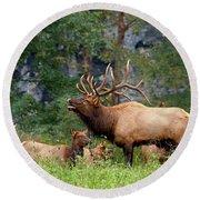 The Bugling Bull Elk Round Beach Towel
