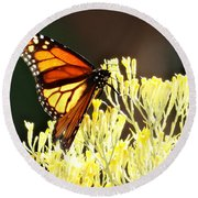 The Butterfly 2 Round Beach Towel