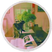 The Cat And The Hydrangea Round Beach Towel