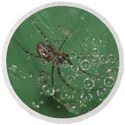 The Catcher Of Shperes Round Beach Towel