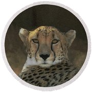 The Cheetah Round Beach Towel