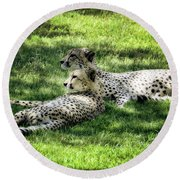 The Cheetahs Round Beach Towel