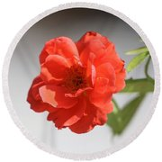 The Coral Rose Round Beach Towel