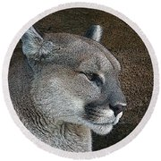 The Cougar Round Beach Towel