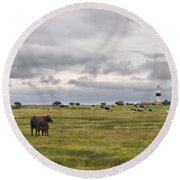 The Cows Of Ottenby 1 Round Beach Towel