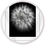The Dahlia Bw Poster Round Beach Towel