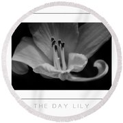 The Day Lily Poster Round Beach Towel