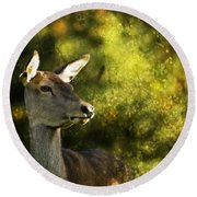 The Deer Round Beach Towel