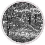 The Dogwoods Are Blooming It Must Be Spring. Round Beach Towel