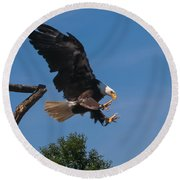 The Eagle Is Landing Round Beach Towel