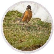The Early Bird - Robin - Casper Wyoming Round Beach Towel