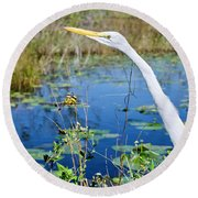 The Egret And The Dragonfly Round Beach Towel