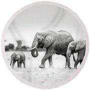 The Elephant Family Round Beach Towel