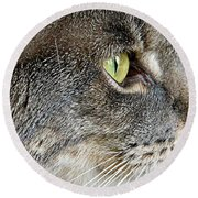 The Eye Of The Tiger  Round Beach Towel