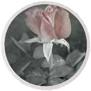 The Faded Rose Round Beach Towel