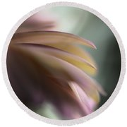 The Feathery Kisses In My Dreams Round Beach Towel