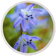 The First Spring Flowers Round Beach Towel