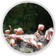The Flamingos Round Beach Towel