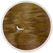 The Floating Feather Round Beach Towel