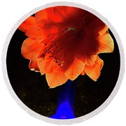 The Flower Of Cactus In A Blue Vase. Round Beach Towel
