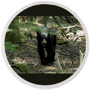 The Forest Bear Round Beach Towel