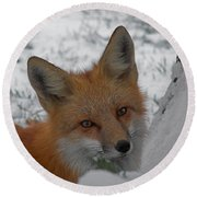 The Fox 4 Round Beach Towel