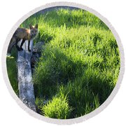 The Fox Round Beach Towel