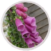 The Foxglove And The Bumble Bees Round Beach Towel