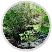 The Frog Pond Round Beach Towel