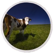 The Funny Cow Round Beach Towel