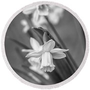 The Gentleness Of Spring Bw Round Beach Towel