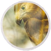 The Glass Case Eagle Round Beach Towel