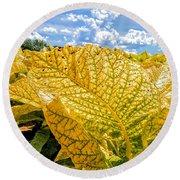 The Golden Leaf Round Beach Towel