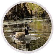 The Graceful Goose Round Beach Towel