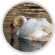The Graceful Swan  Round Beach Towel