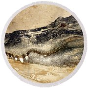 The Great Alligator Round Beach Towel