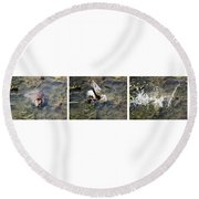 The Great Beaver Escape Triptych Round Beach Towel