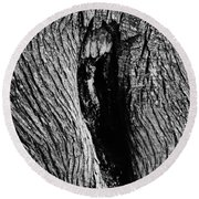 The Hermit In The Woods Round Beach Towel