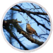 The Hiding Singer. Dunnock Round Beach Towel