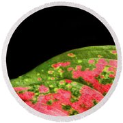 The Hills Of Mars Round Beach Towel