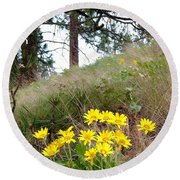 The Hillsides Are Alive Round Beach Towel