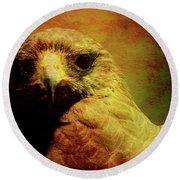 The Hunter . Portrait Of A Hawk . Texture . 40d7877 Round Beach Towel
