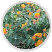 The Lantana In The Near 20 Round Beach Towel